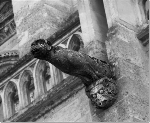 Gargouille de la cathédrale de Laon